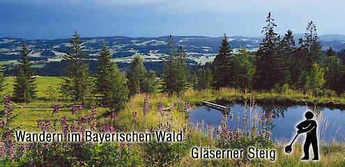 Wandern im Bayerischen Wald - Gläserner Steig